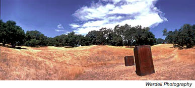 serra sculpture oliver ranch